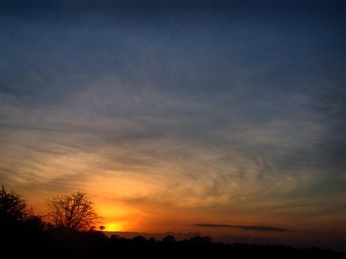 light sunset sky orange cloud sun storm tree kilimanjaro yellow skyline night clouds sunrise tramonto kenya alba blu silouette safari clear giallo shining arancio kimana