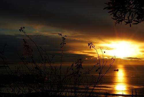 sunset sea panorama sun view trieste nikond80 ojosdiele
