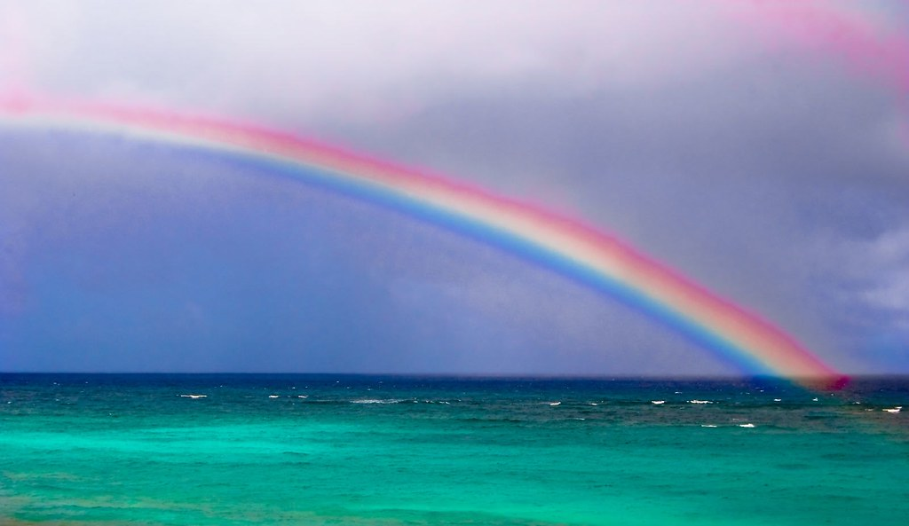 bajan rainbow