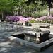 Garden  by Valdir Grassi Jr.