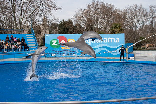 Barcelona - Zoo Aquarama