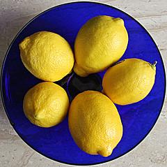 Squircle - Lemons & Cobalt Bowl