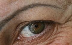 hand(0.0), nose(0.0), face(0.0), head(0.0), eyelash extensions(0.0), human body(0.0), mouth(0.0), brown(1.0), skin(1.0), eyelash(1.0), close-up(1.0), wrinkle(1.0), eyebrow(1.0), eye(1.0), organ(1.0),