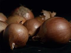 onion_3