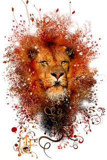 Lion!, MF colorfull series!!