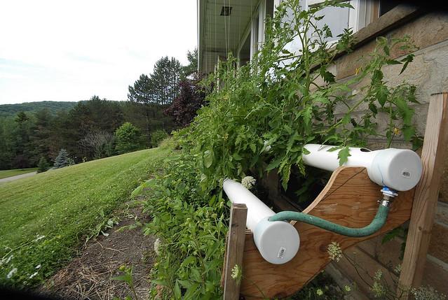 Nft hydroponics flickr photo sharing