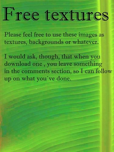 free image download