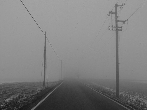 Nebbia in valpadana-A fog project02