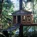 Tree House by B e t h