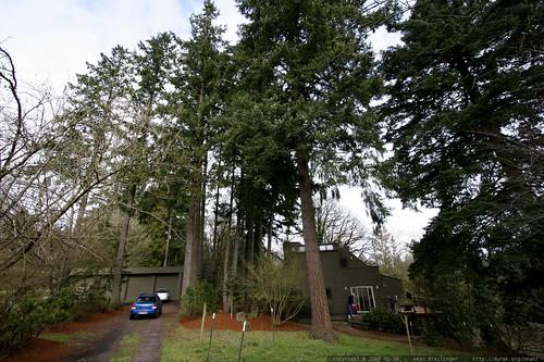 custom home, barn, 8 car garage on 14 wooded acres for $650,000    MG 9914