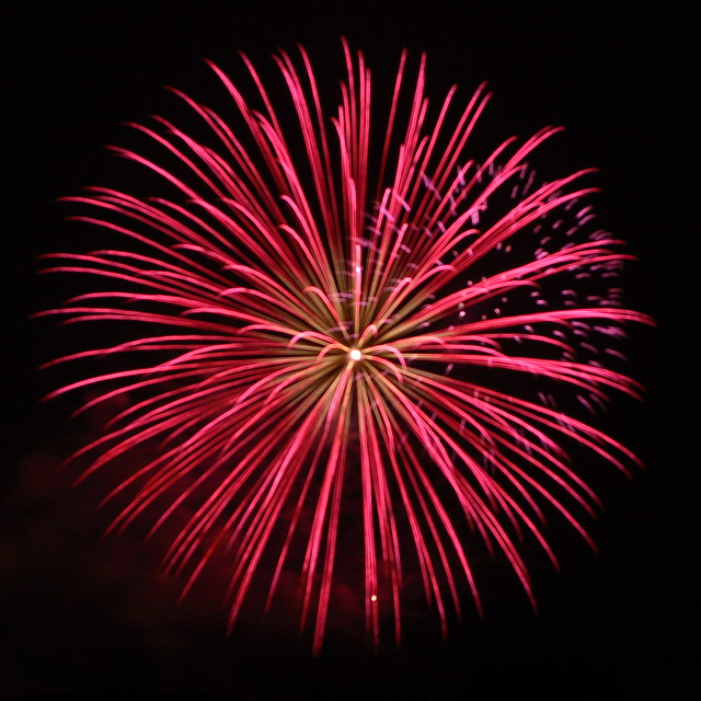 Blossom of Fire | Flickr - Photo Sharing!