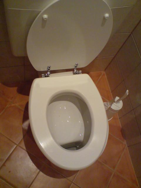 German Shelf Toilet 003 - German Shelf Toilet