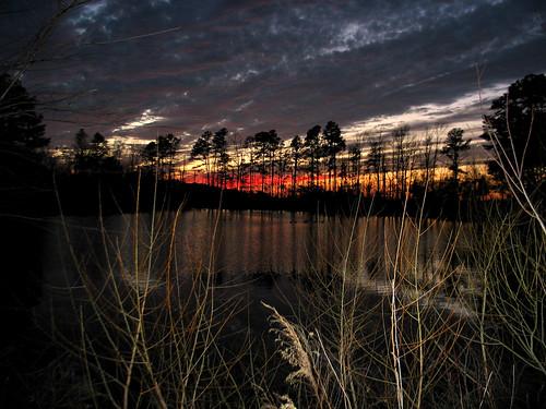 pink trees sunset lake water clouds virginia twilight pond dusk va striking dinwiddie dinwiddiecounty