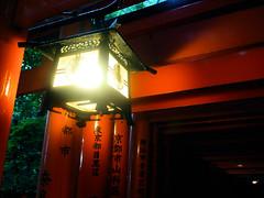Lantern and torii - Fushimi Inari