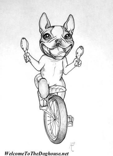 Boston Terrier Tattoo Design | Flickr - Photo Sharing!