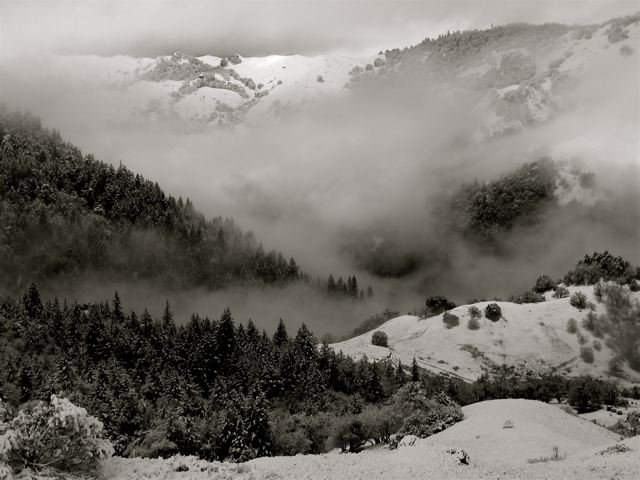 Black and White Landscapes