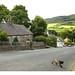 Small Irish town by Adrian.73