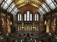 natural history museum 1