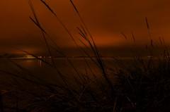 Harbour Night Langstone