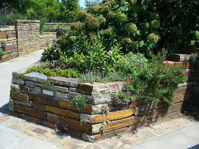 2008 08 24 Powell Gardens Flickrset 0050 Explore Smi Flickr Photo Sharing