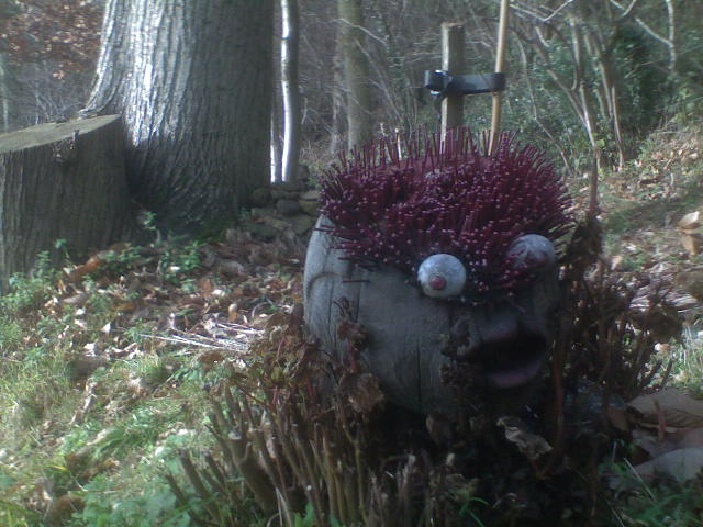Time to lay off the sauce? No - I really did see a goggle-eyed, gape-mouthed, tree stump monster with a punk haircut. And here's the proof. Hurst Green to Oxted