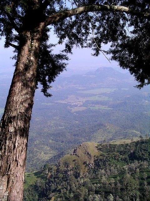 Wellawaya from Poonagala