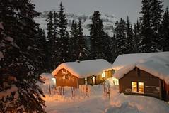 hut, winter, snow, log cabin, sugar house,