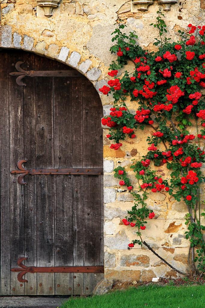 Door and Roses