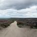 Small photo of Llandegla - Top of the Hill