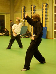 aikido(0.0), hapkido(1.0), individual sports(1.0), contact sport(1.0), sports(1.0), combat sport(1.0), martial arts(1.0), kung fu term(1.0),