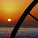 Sunset Quarter Wheel