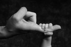 Kathleen Maynord's teeny tiny hand