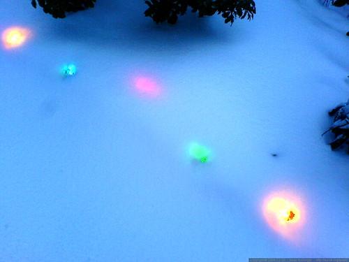 paula's xmas lights are snowed under   DSC02228
