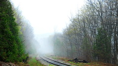Belfountain Train Track