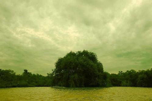Las nubes abriéndose justo sobre el árbol solitario del lago. The clouds are open itself on the lone tree of the lake.