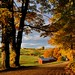 Jenne Farm In Fall - Reading, Vermont