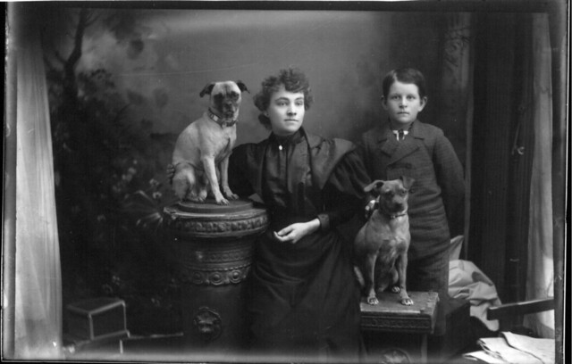 Portrait photograph of woman, boy and two dogs n.d.
