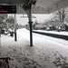 Kew Gardens Station in Snow - Eastbound