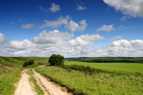The Chilterns, Tring, Hertfordshire, England