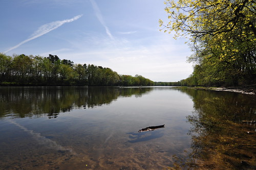 morning trees reflections river newhampshire merrimackriver boscawen