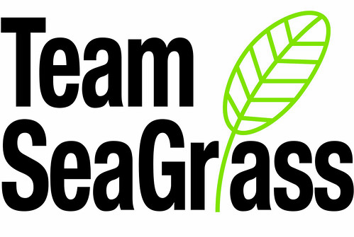 TeamSeagrass logo