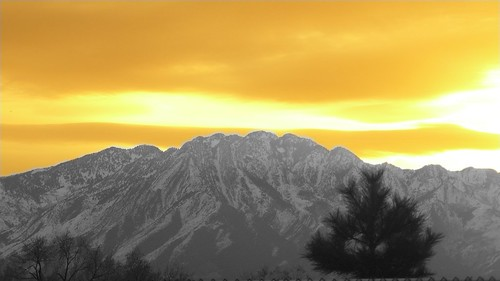 sunset sky orange white mountain black tree sunrise blackwhite
