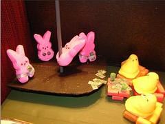 peeps, pink, toy,