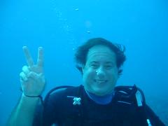 sports, sea, recreation, outdoor recreation, marine biology, divemaster, water sport, underwater, freediving,