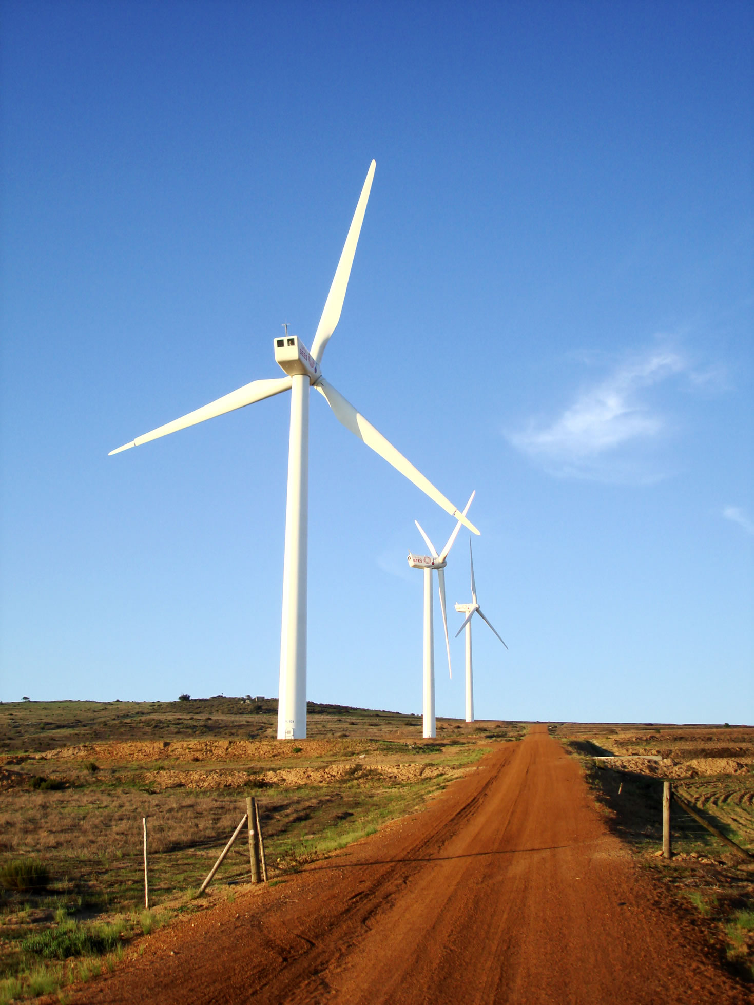 A wind farm in Cape Town, South Africa