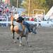 Small photo of Bareback Horse Riding