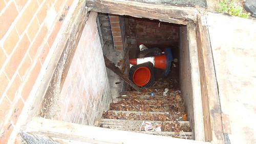 Children's Home Cellar