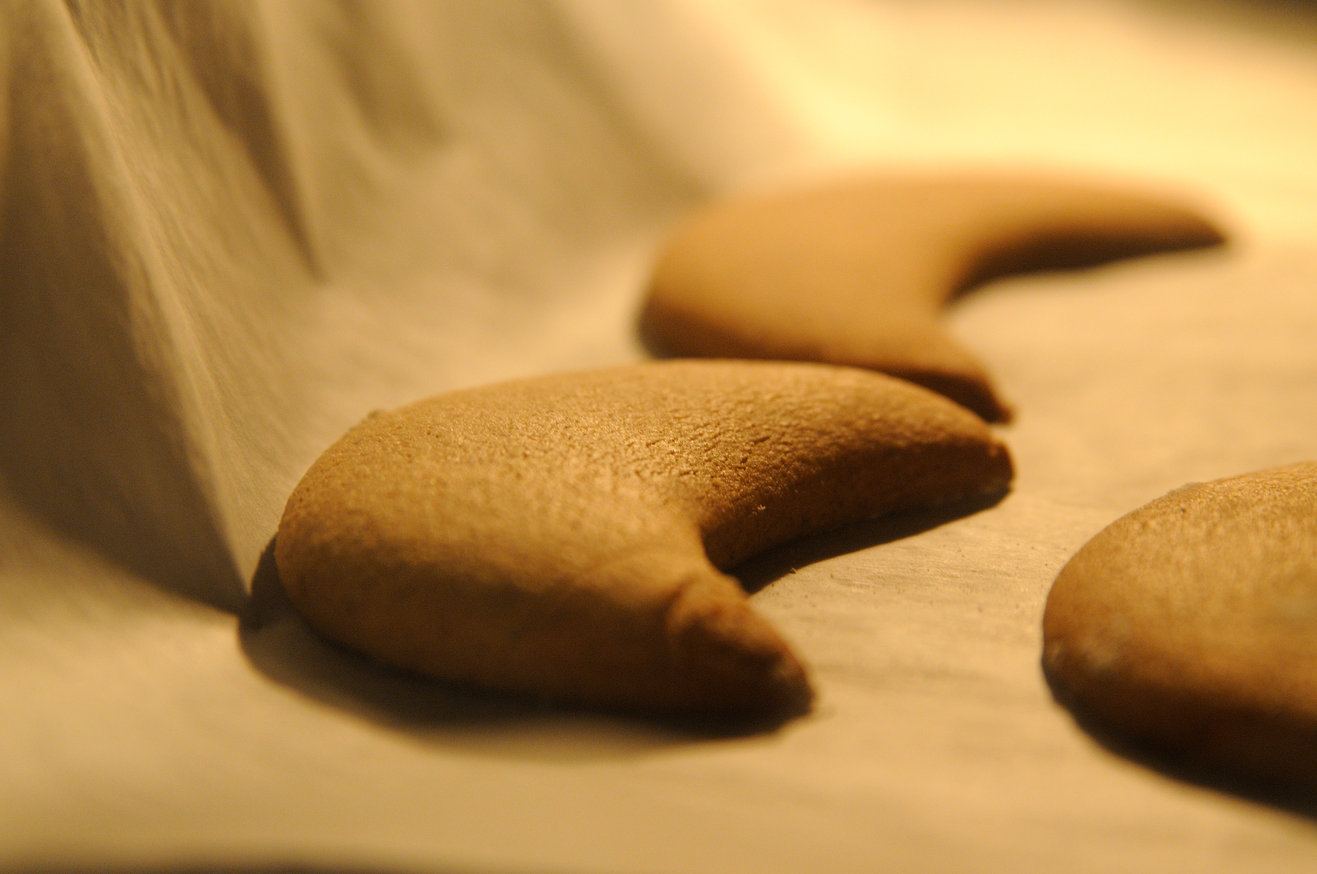 Gingerbread cookies, beta version