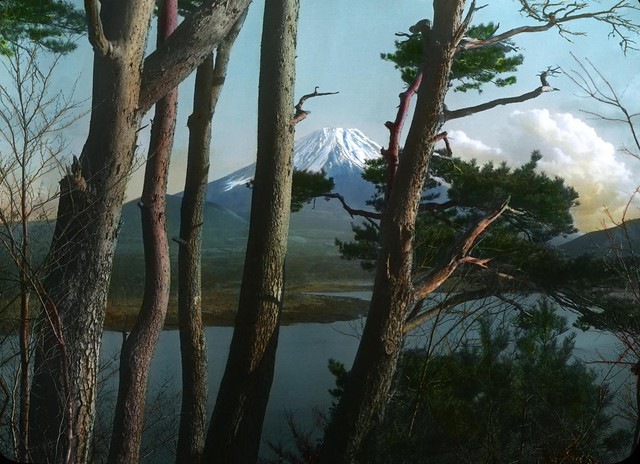 MORNING COLORS IN OLD JAPAN -- Mt. Fuji Thru Pines
