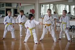 taekkyeon(0.0), striking combat sports(1.0), individual sports(1.0), contact sport(1.0), sports(1.0), tang soo do(1.0), combat sport(1.0), martial arts(1.0), karate(1.0), shorinji kempo(1.0),